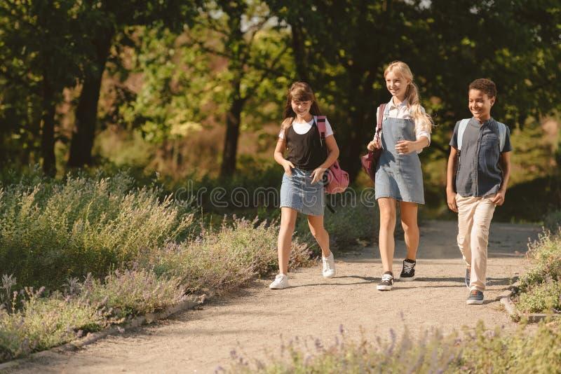 Multiethnic teens walking in park stock image