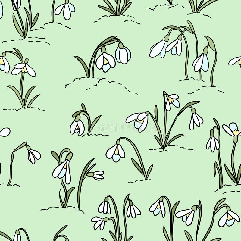 Cute snowdrops flowers seamless pattern. Beginning of spring royalty free illustration