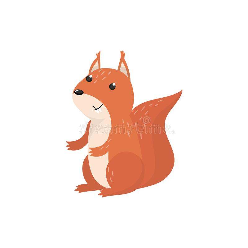 Cute squirrel woodland cartoon animal vector Illustration. On a white background vector illustration