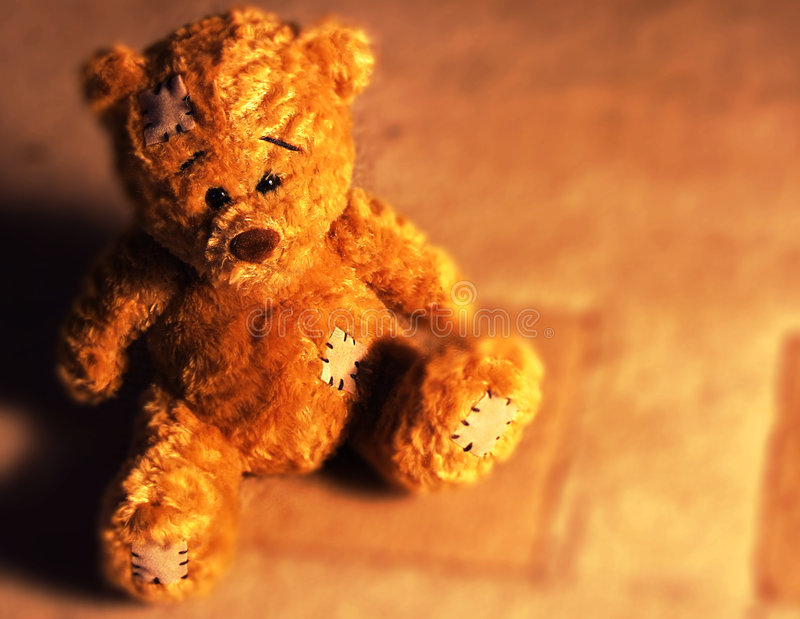 Cute teddy royalty free stock photos