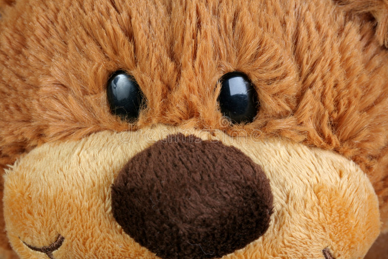 Cute teddy bear royalty free stock photos