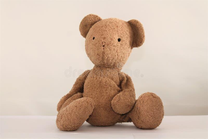 Cute Teddy Bear Sitting, Isolated on White Backround.  royalty free stock image