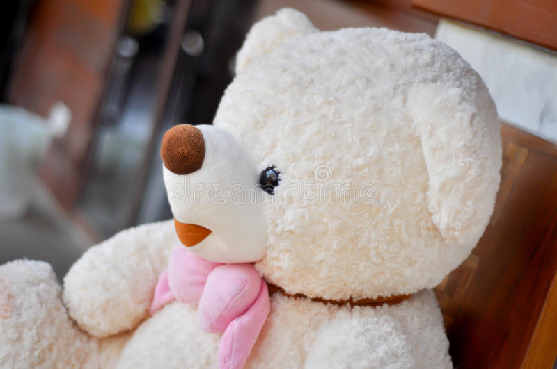 Cute teddy bear. White teddy bear tied with pink scarf royalty free stock photography
