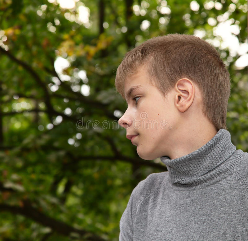 Download Cute  teenager in park stock image. Image of portrait - 12235709