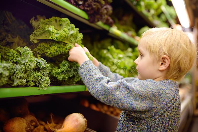 Cute toddler boy in a food store or a supermarket choosing fresh organic kale salad. Healthy lifestyle for young family with kids royalty free stock photography