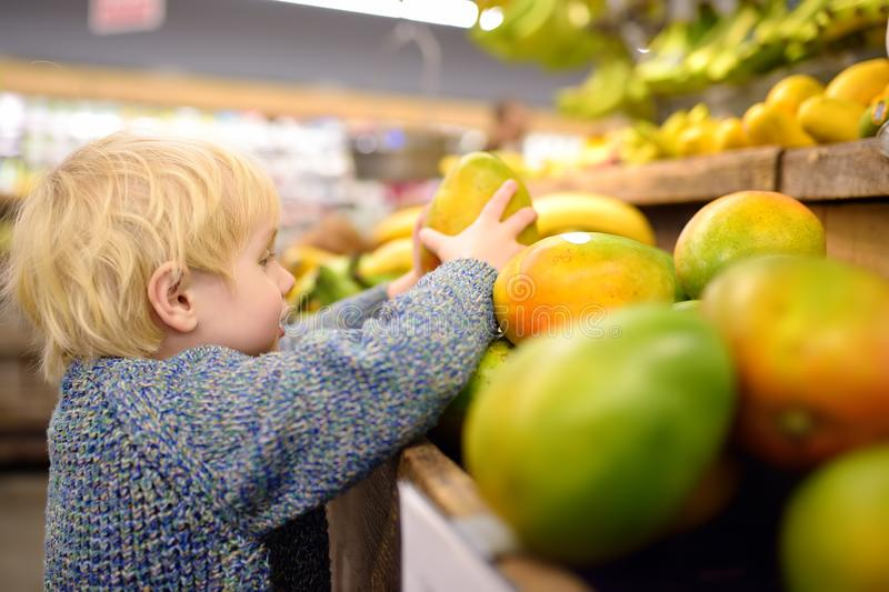 Cute toddler boy in a food store or a supermarket choosing fresh organic mango. Healthy lifestyle for young family with kids stock photography