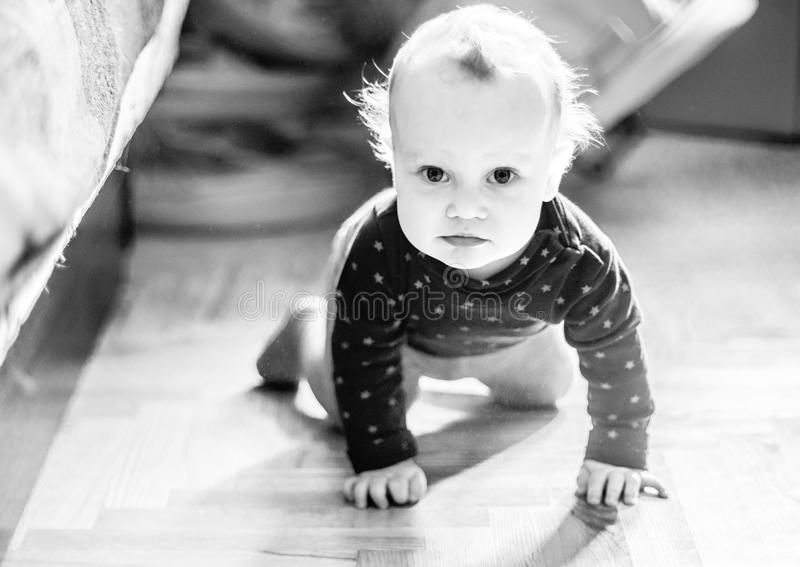 Cute toddler boy in a room posing stock photography