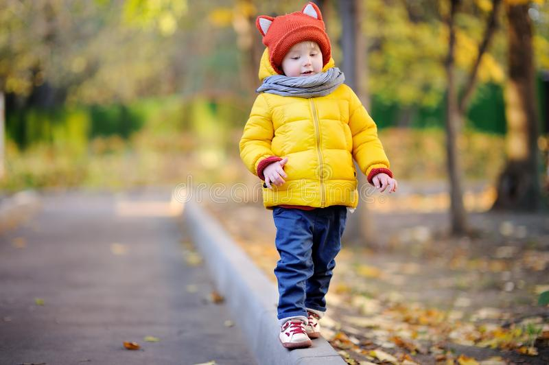 Cute toddler boy wearing hat with ears playing outdoors at autumn day royalty free stock image