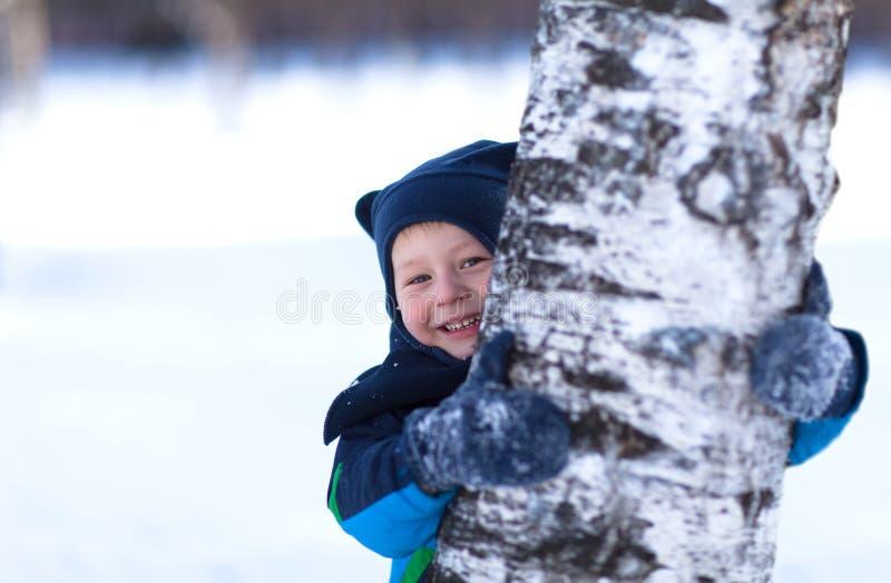 Cute toddler hiding behind a birch tree