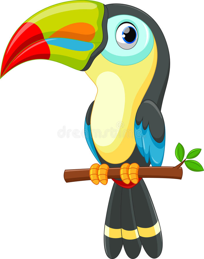 cute toucan bird cartoon stock illustration image 59291475 zoo animal clip art pinterest zoo animals clipart images
