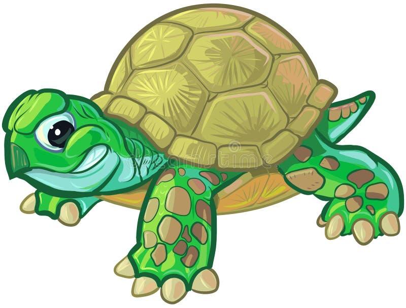 Cute Tough Cartoon Baby Turtle or Tortoise royalty free illustration