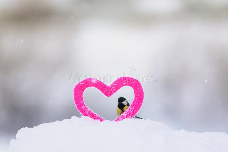 Cute Valentine card with bird tit Peeps out of the frame knitted decorative element pink heart stands in the snow in the Park stock photography