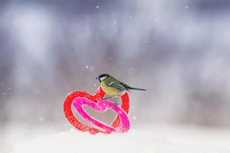 Cute Valentine`s day card with the bird is on the border of two knitted decorative elements hearts are in the snow royalty free stock photos