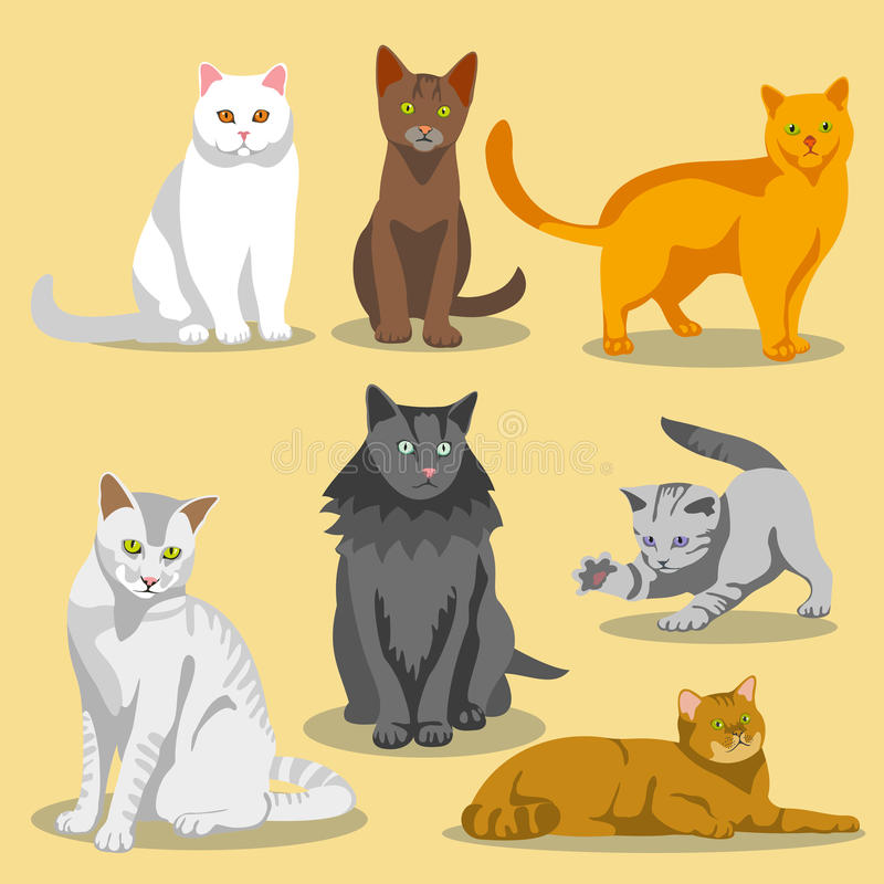 Cute vector cats with different colored fur and markings vector illustration