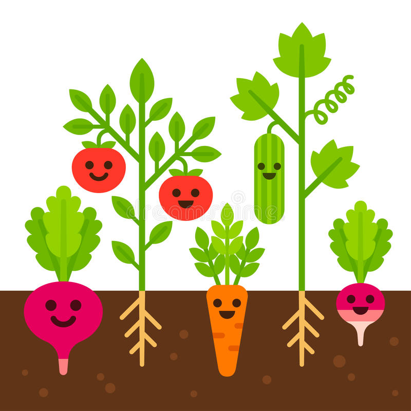 Cute vegetable garden illustration. Cute vegetables with smiling faces growing in soil. Vegetable garden set, flat cartoon vector illustration vector illustration