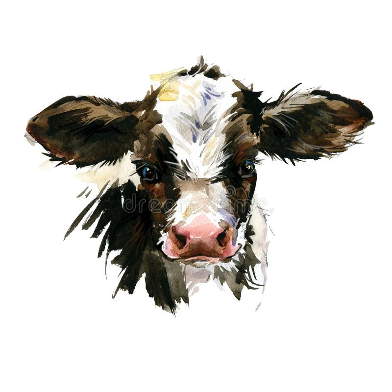 Free Cute Watercolor Calf. Baby Bull Illustration. Cattle. Farm Animal. Royalty Free Stock Photography - 197022137