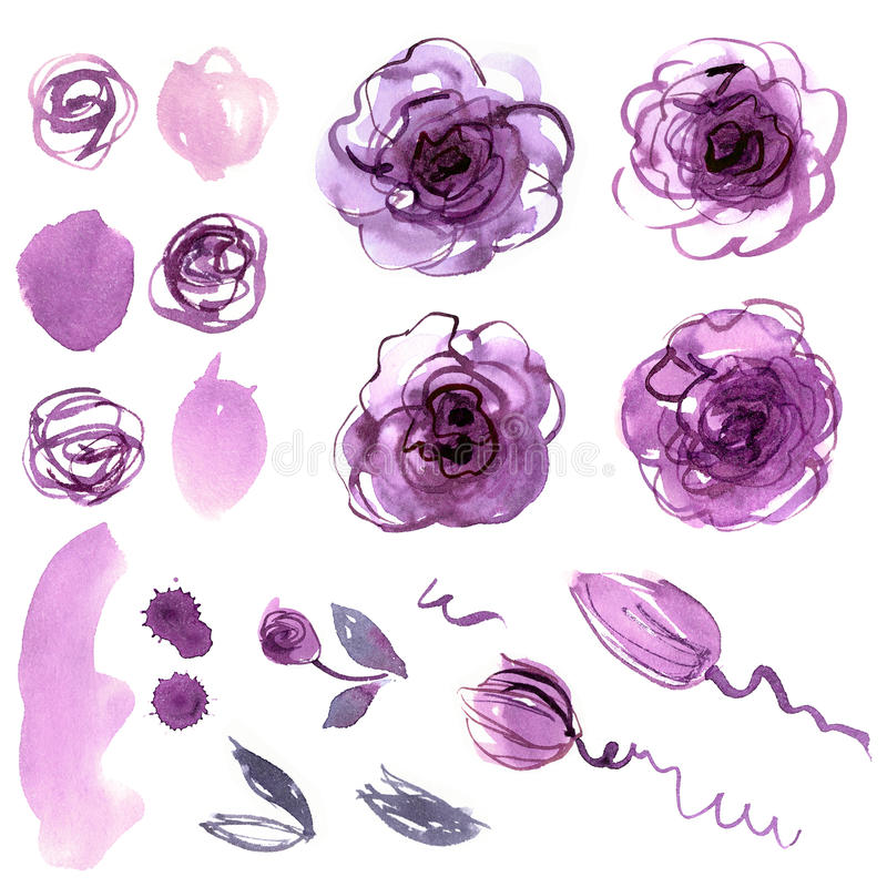 Cute watercolor hand painted flower elements. royalty free illustration