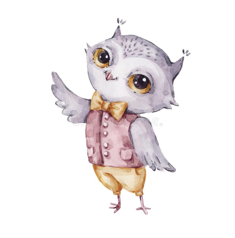 Cute watercolor male owl, childish style royalty free illustration