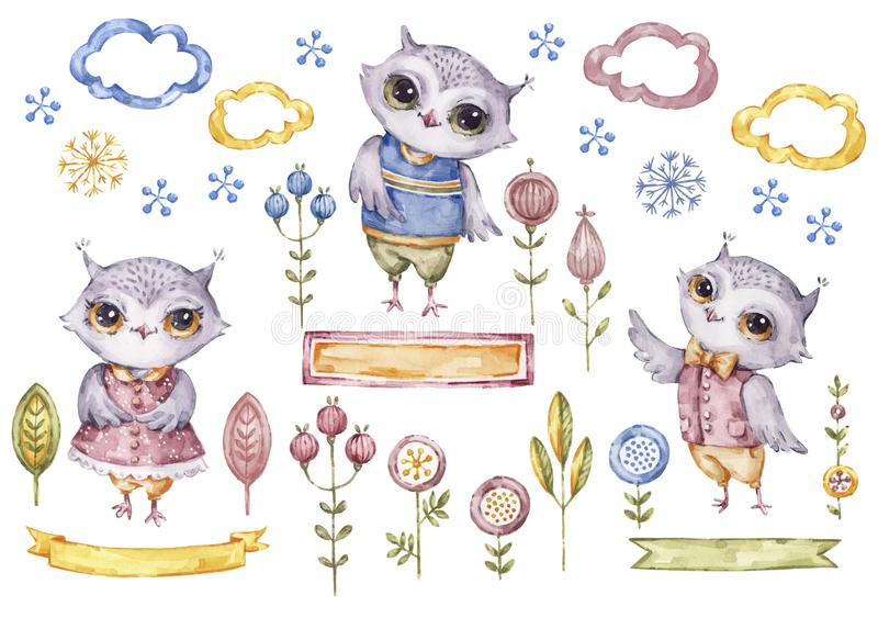 Cute watercolor owls collection, floral elements vector illustration
