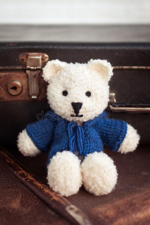 Cute white teddy bear royalty free stock photography