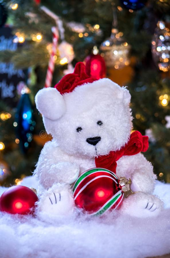 Cute white teddy bear with a red bow and hat is ready for Christmas royalty free stock photos