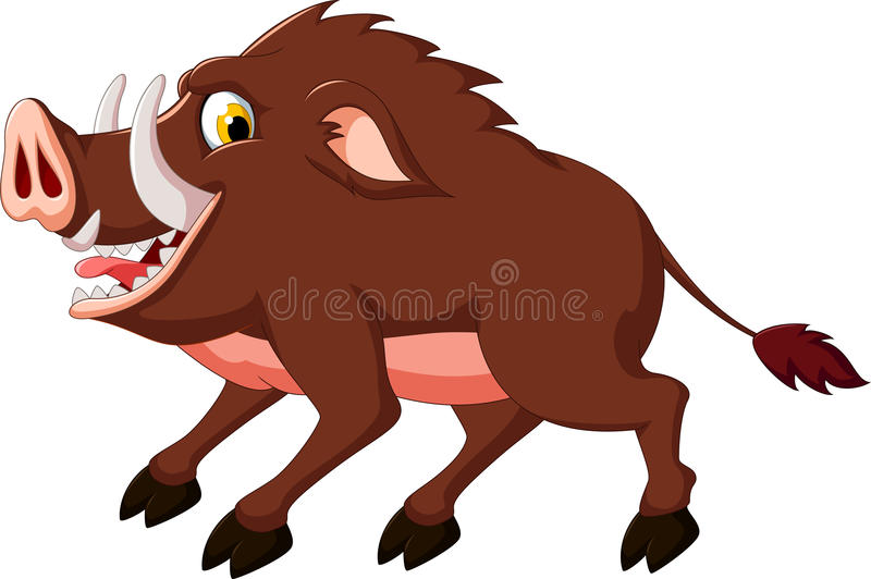 Cute wild boar cartoon. Illustration of cute wild boar cartoon vector illustration