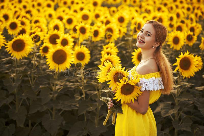 Cute woman in a blossoming sunflower field royalty free stock photos