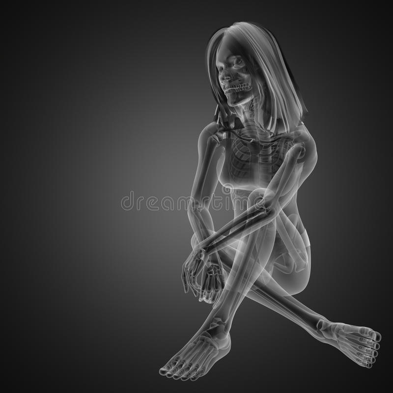 Download Cute woman radiography stock illustration. Illustration of girl - 23550423