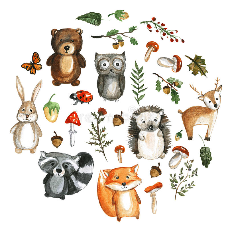Cute woodland animals Watercolor images Kindergarten zoo icons. Cute woodland animals Watercolor animal icons royalty free illustration