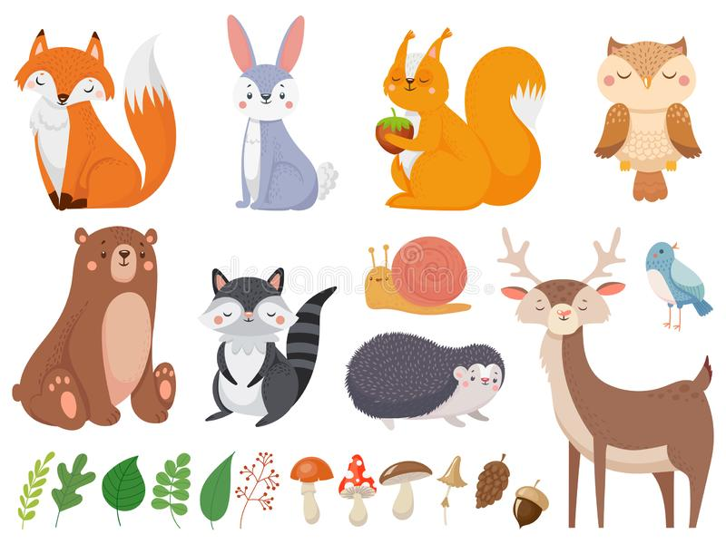 Cute woodland animals. Wild animal, forest flora and fauna elements isolated cartoon vector illustration set vector illustration