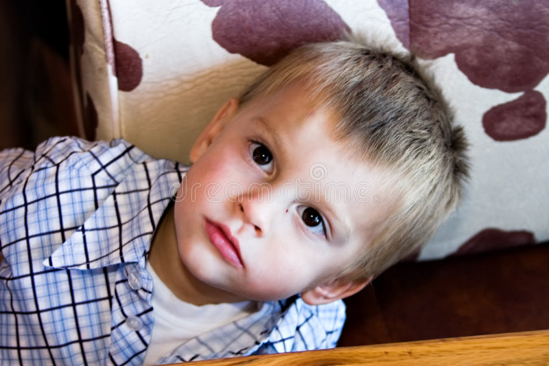 Download Cute young boy stock image. Image of cute, toddler, looking - 2574017