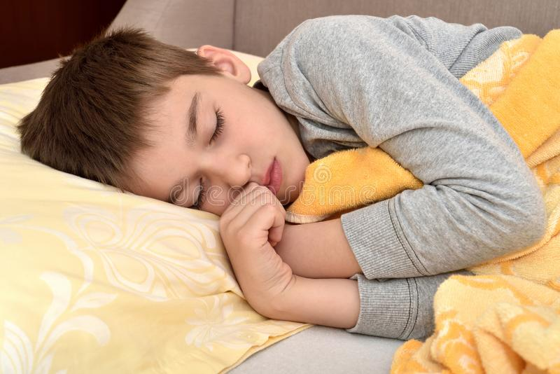 Cute young boy sleeping royalty free stock images