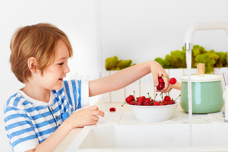Cute young boy washing the armful of sweet cherries under tap water in the kitchen royalty free stock photos