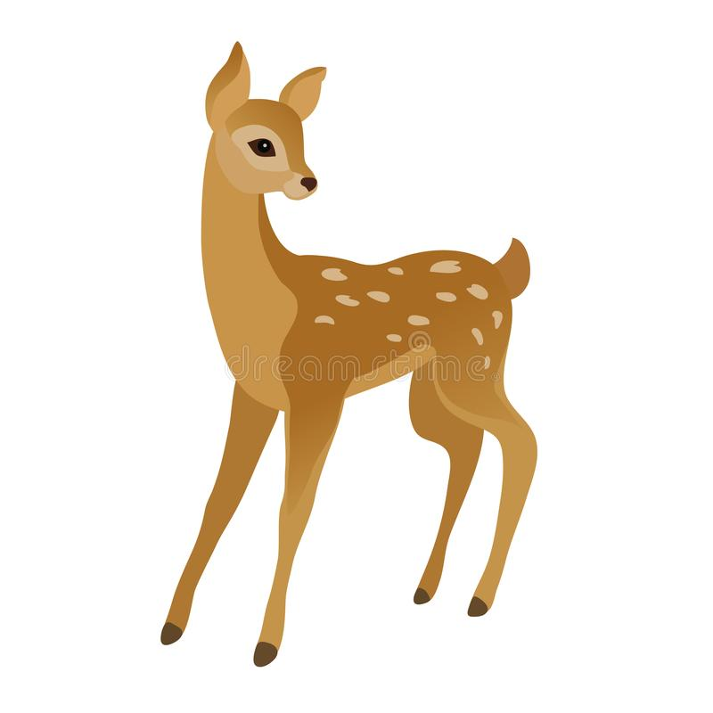 Cute young deer. Vector drawing of a cute young deer on a white background vector illustration