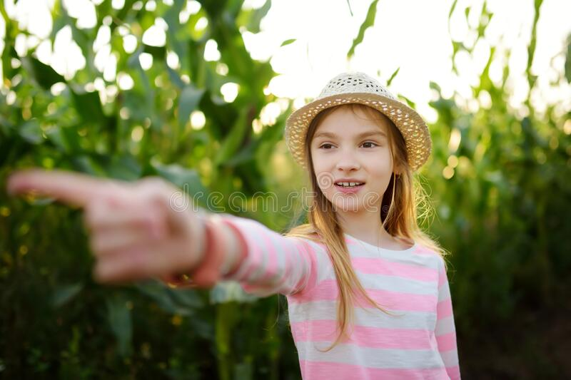 Cute young girl having fun in a corn maze field during autumn season. Games and entertainment during harvest time. Active family leisure with kids stock photos
