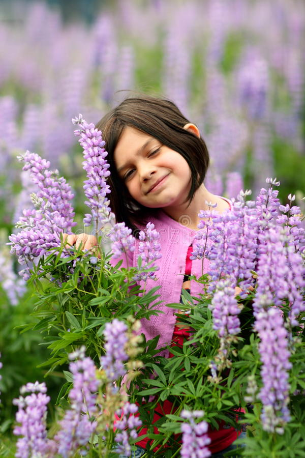 Download Cute Young Girl In Patch Of Purple Wild Flowers Stock Photo - Image: 19983168