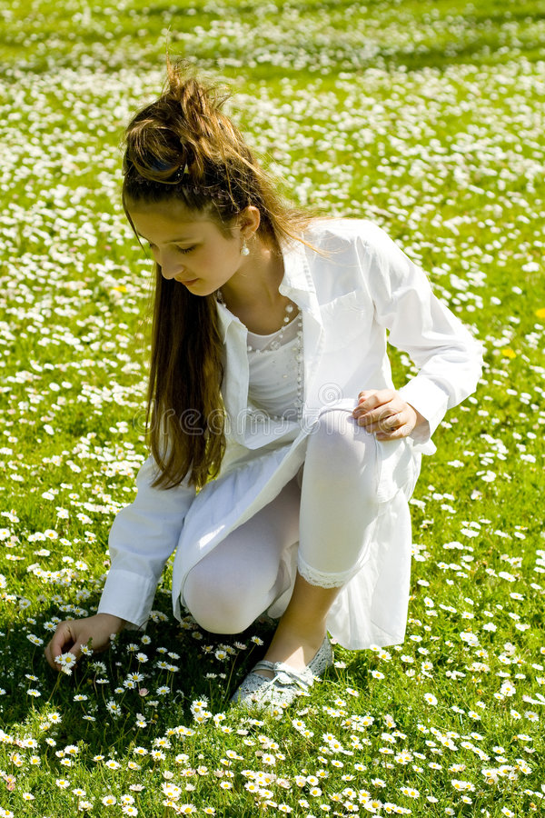 Cute young girl picking flowers stock photography