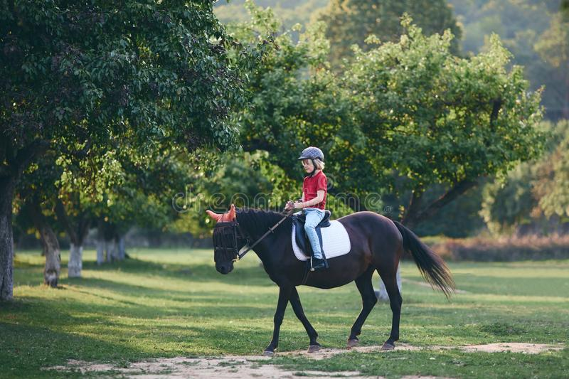 Cute young rider on horseback enjoying horse riding at summer garden royalty free stock images