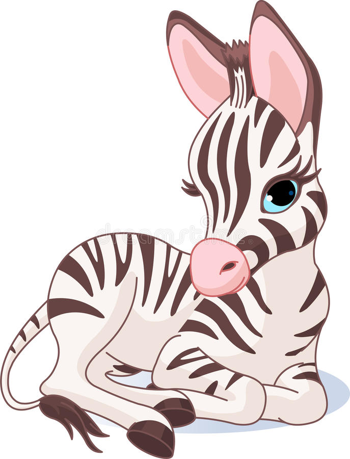 Cute Zebra Foal vector illustration