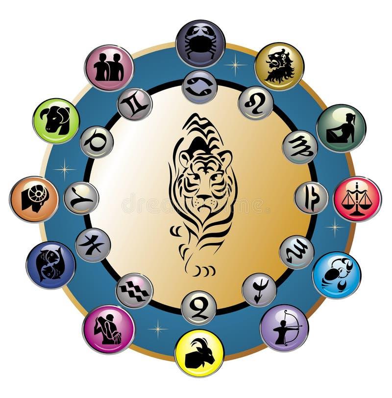 Cute Zodiac Wheel with tiger. Vector tiger zodiac sign symbol wheel vector illustration