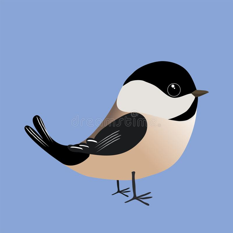 A cute chickadee comic illustration. A cute  black-capped chickadee cartoon illustration on a blue background royalty free illustration