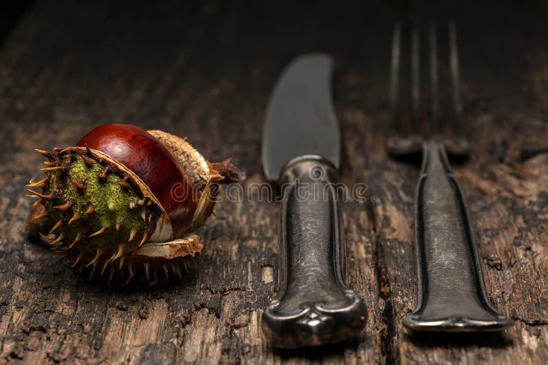 Cutelaria e castanha em uma tabela de madeira rústica imagem de stock