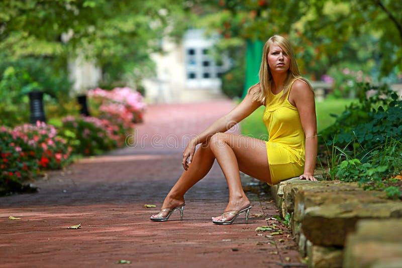 Cutie da faculdade fotografia de stock royalty free