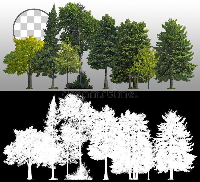 Free Cutout Tree Line. Coniferous And Decidious Stock Photo - 160139480