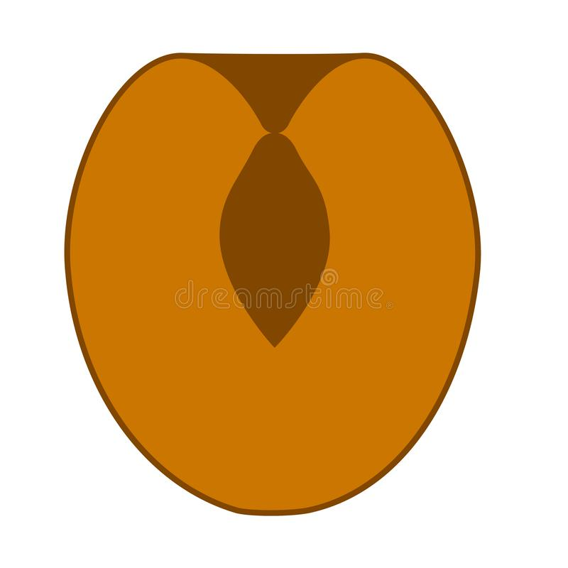 Cutted apricot icon. Flat illustration of cutted apricot vector icon for web design stock illustration