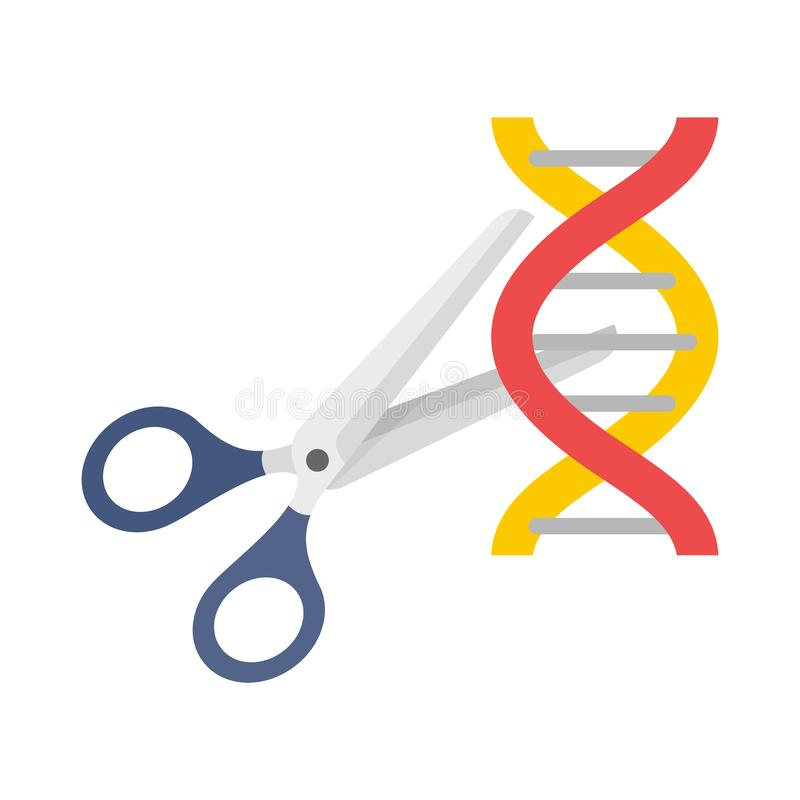 Cutted dna molecule icon, flat style. Cutted dna molecule icon. Flat illustration of cutted dna molecule vector icon for web design royalty free illustration