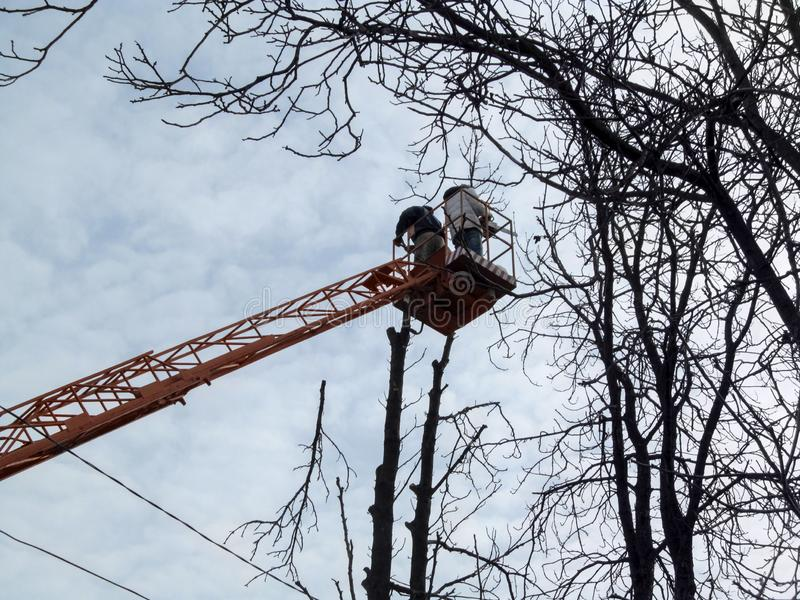 Cutted fora do ramo voa para baixo, e plataforma aérea com os trabalhadores no fundo de fios elétricos fundo de Mola-outono-inv imagens de stock