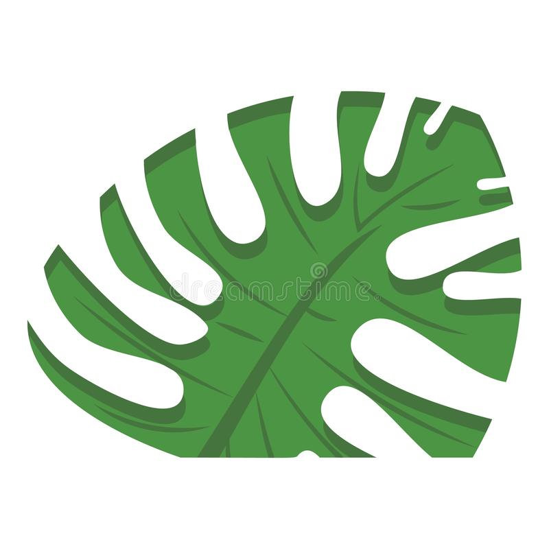 Cutted monstera leaf icon, cartoon style. Cutted monstera leaf icon. Cartoon of cutted monstera leaf vector icon for web design isolated on white background royalty free illustration