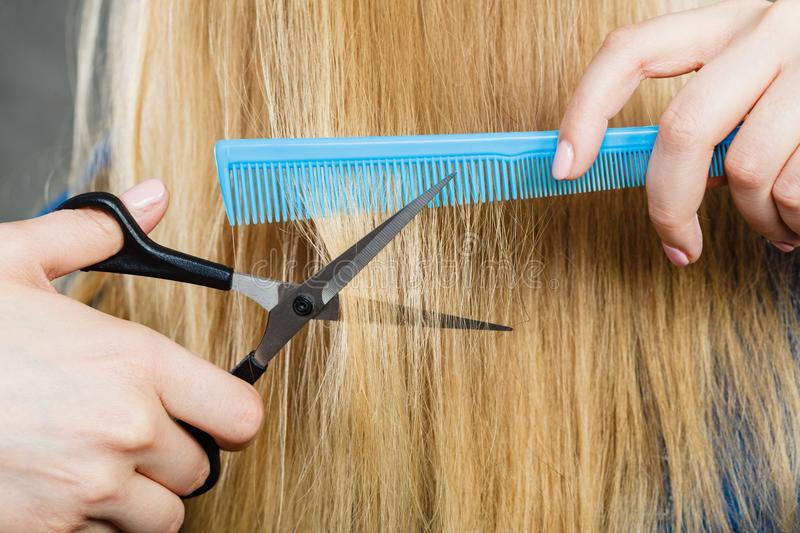 Woman cutting down smoothy hair. Cutting down and shearing concept. Blonde woman cuts and combing her straight smoothy fair hair. Professionalist making new stock image