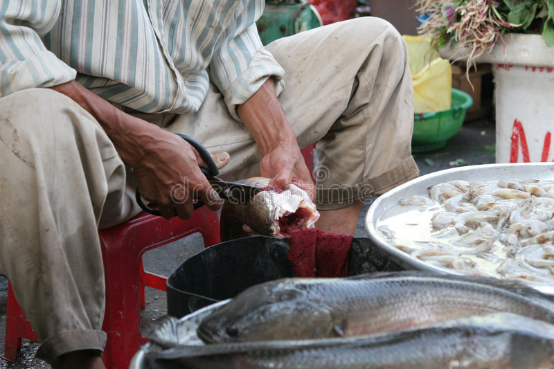 Cutting the fish stock photography